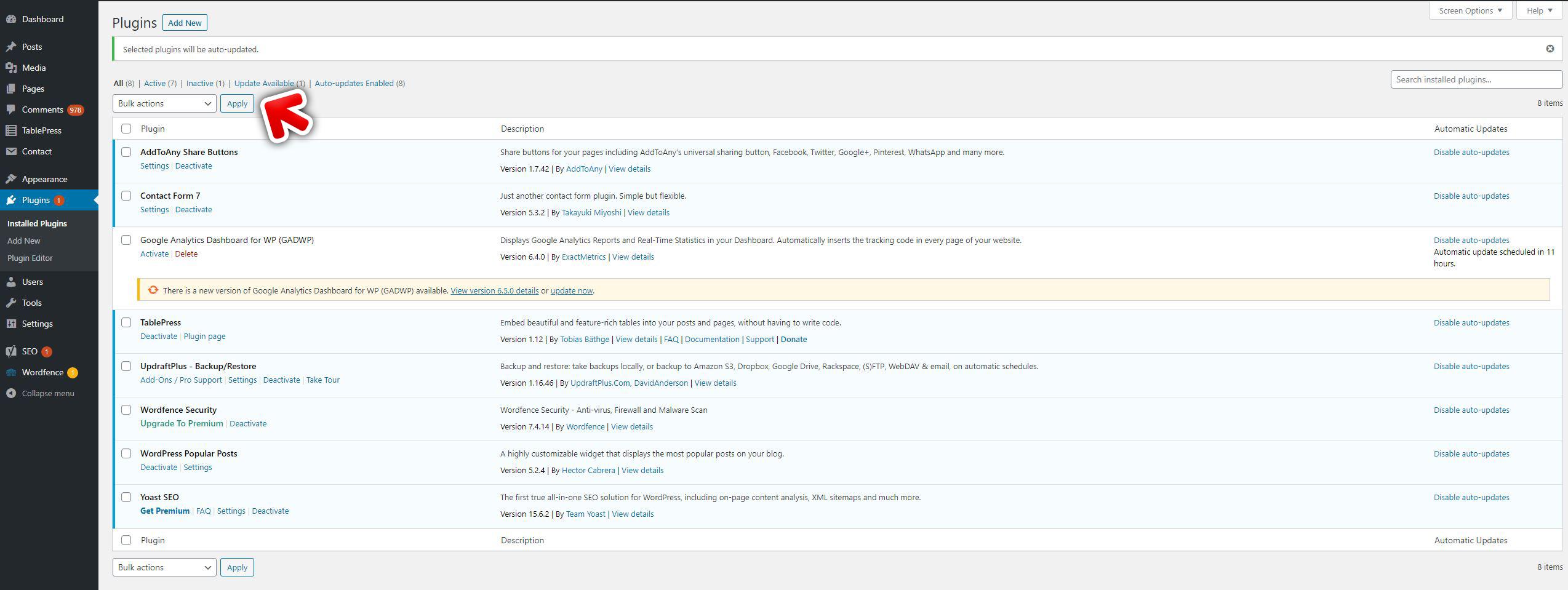 Updating WordPress plugins apply updates