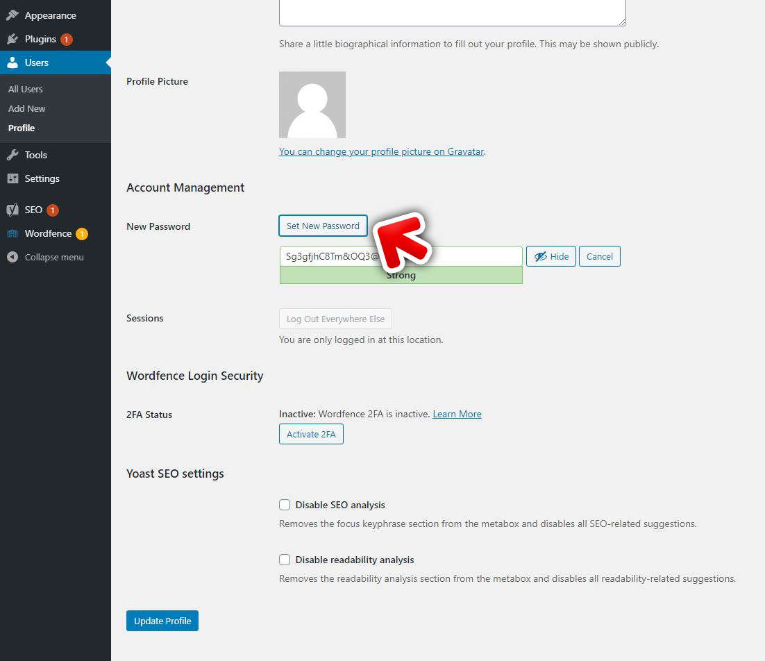 WordPress password update