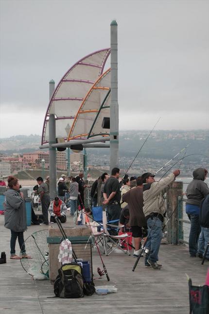 桟橋の様子