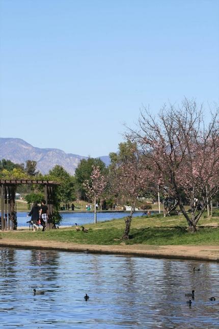 バルボア湖