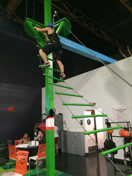 このはしごを登ってSkywal...