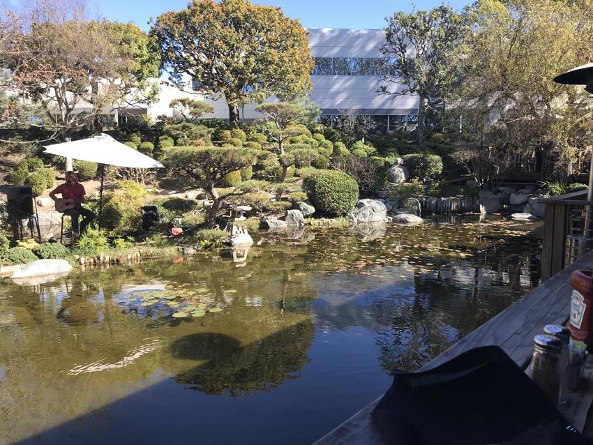 日本庭園風なお庭には大きな池が...