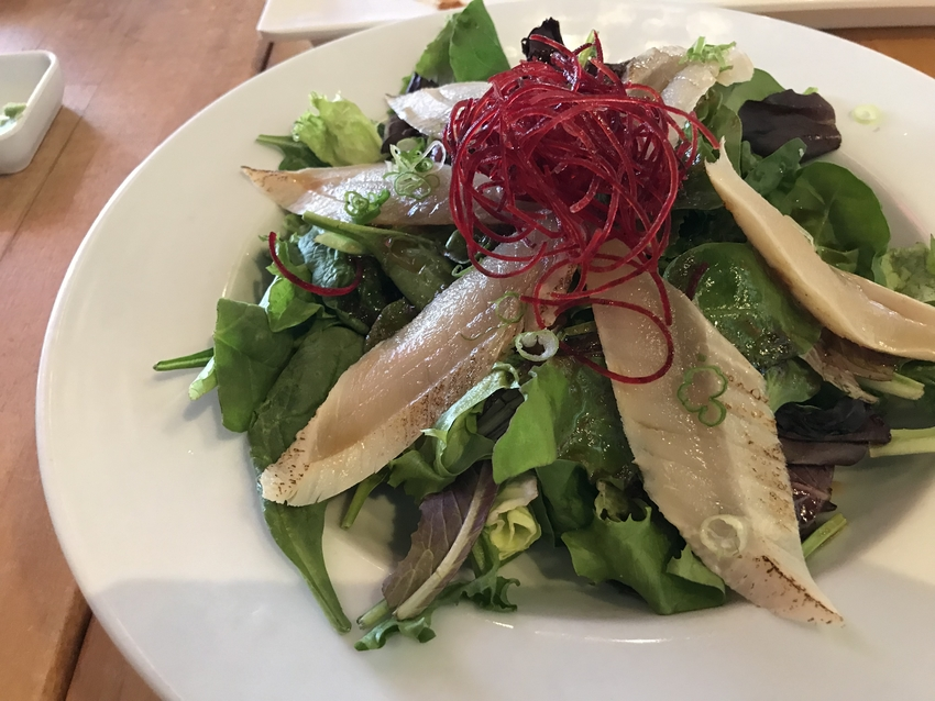 Albacore Tataki Salad