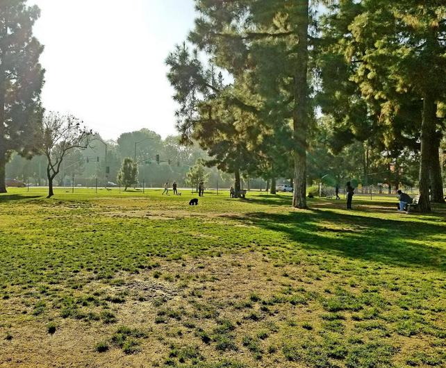 ロサンゼルス:ドッグパーク