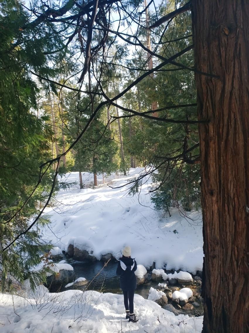 サンディエゴ:雪と町が楽しめる...