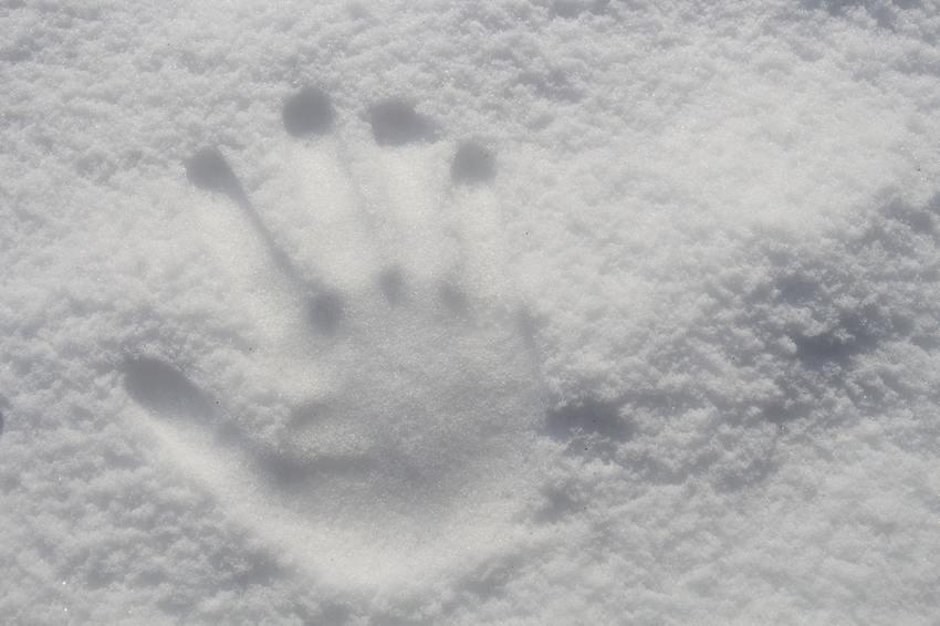 北陸の皆様 雪で大変です。無理...