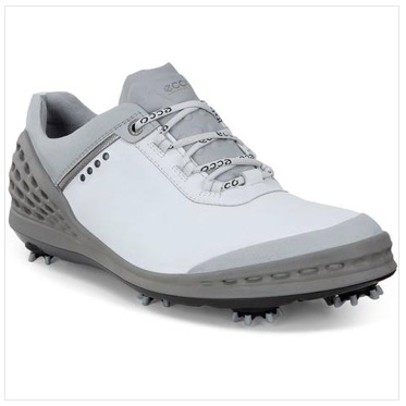 Great Deal on Men's Ecco Gol...