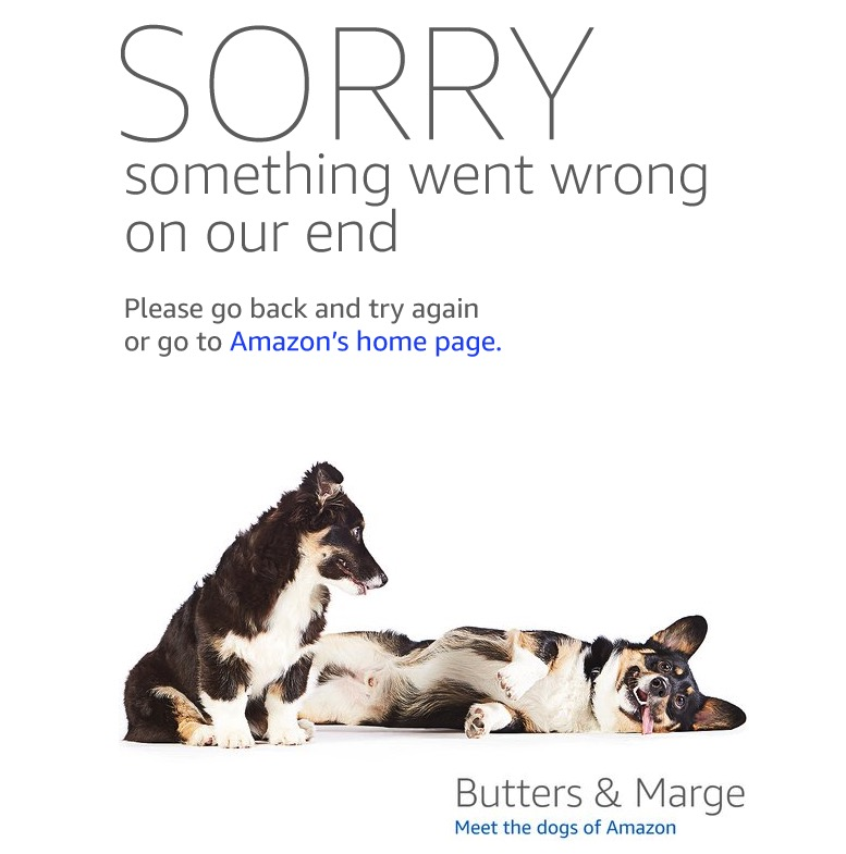 Amazon Prime Day Error