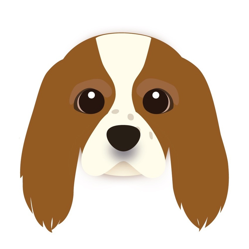 Animated Portrait of Your Pet