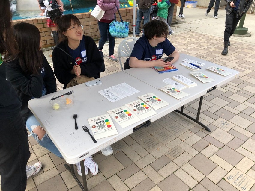 Opinion Stand at Japan Week
