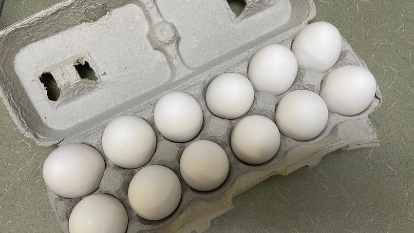 1ダースの卵