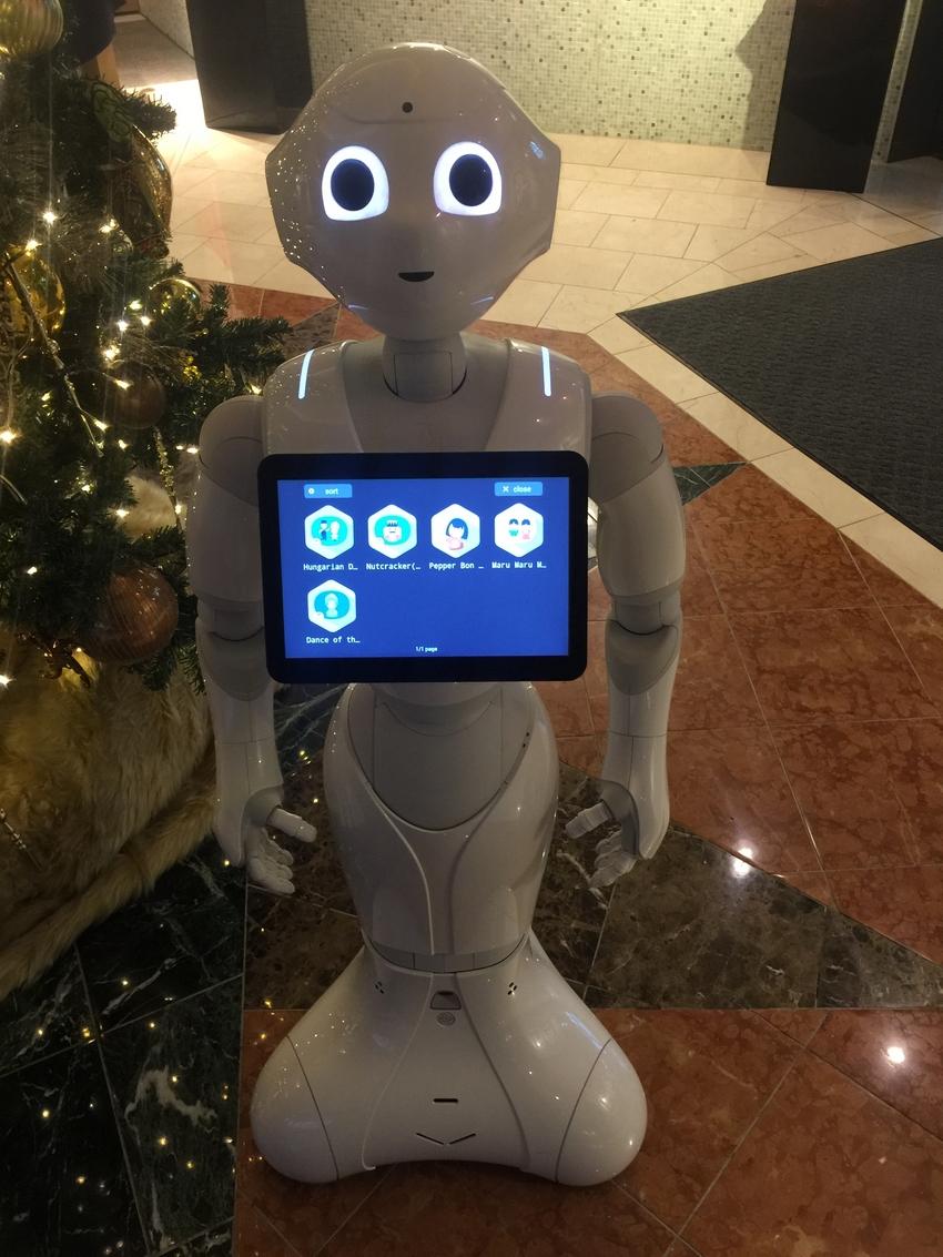 Robots in Japan