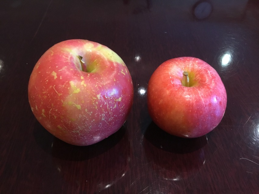 Fuji and Gala Apple