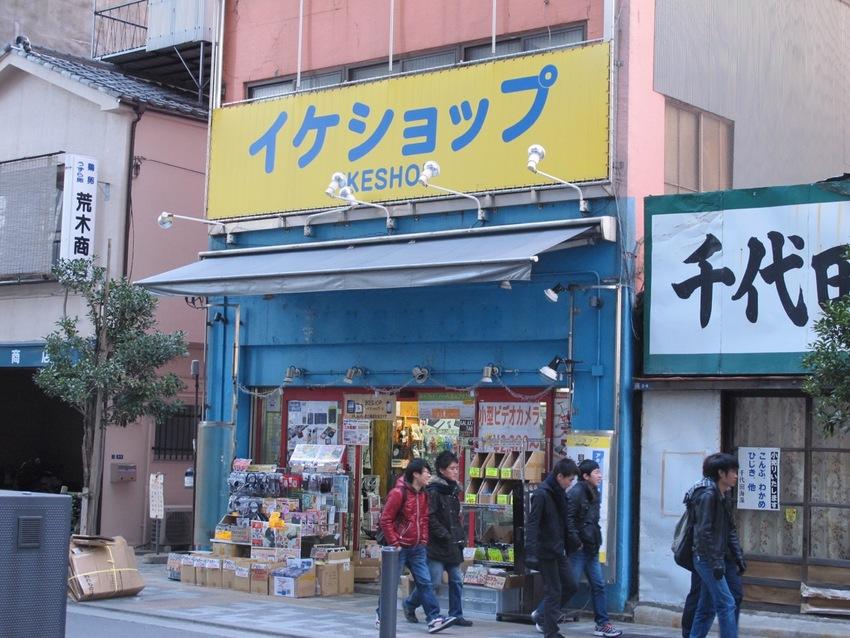 Akihabara Electronics Shopping
