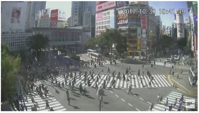 Shibuya Scramble Crossing Live