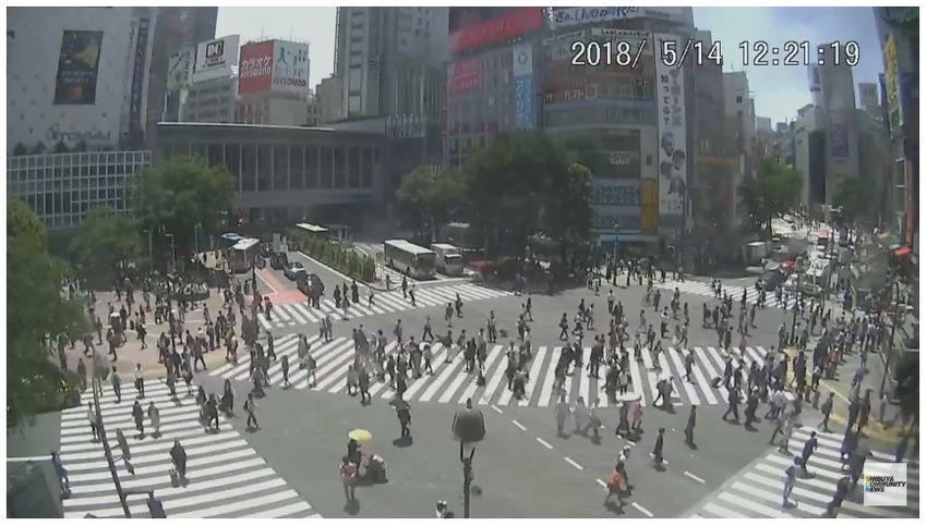 Shibuya Scramble Crossing Liv...