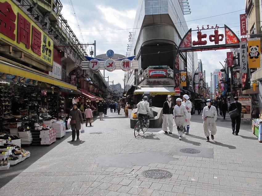 日本にはいつ行けるの。