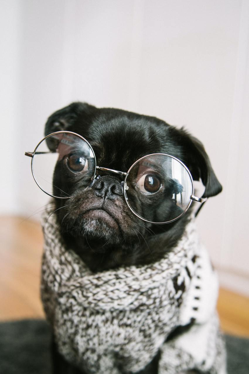 眼鏡の度数