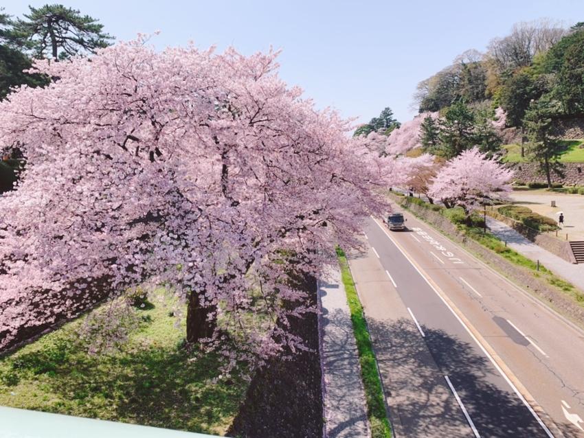 兼六園と金沢城石川門をつなぐ橋...