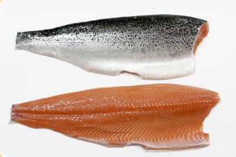 E&E Introduces Atlantic Salmon...