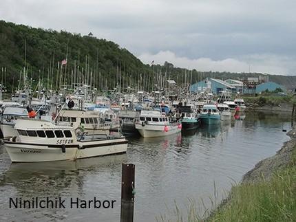 Alaska Salmon Alliance Jan 20...