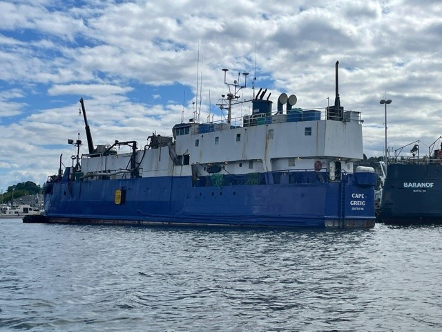 Cape Greig, Seabird Ready to ...