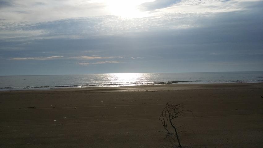 きれいな海です。。。海水は温か...