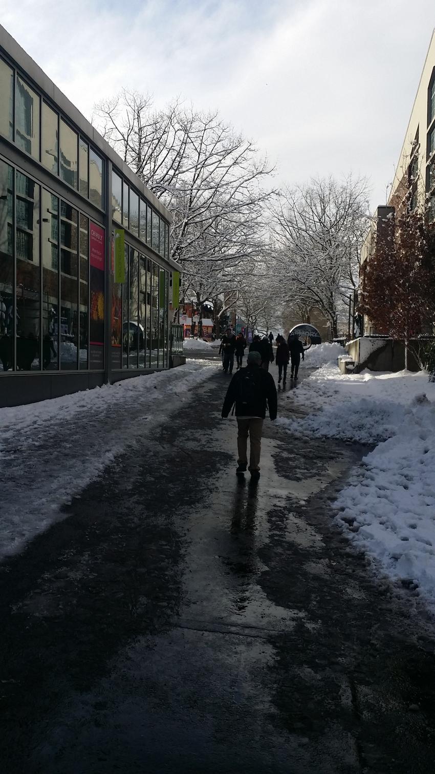 寒くて積もった雪はしばらくのこ...