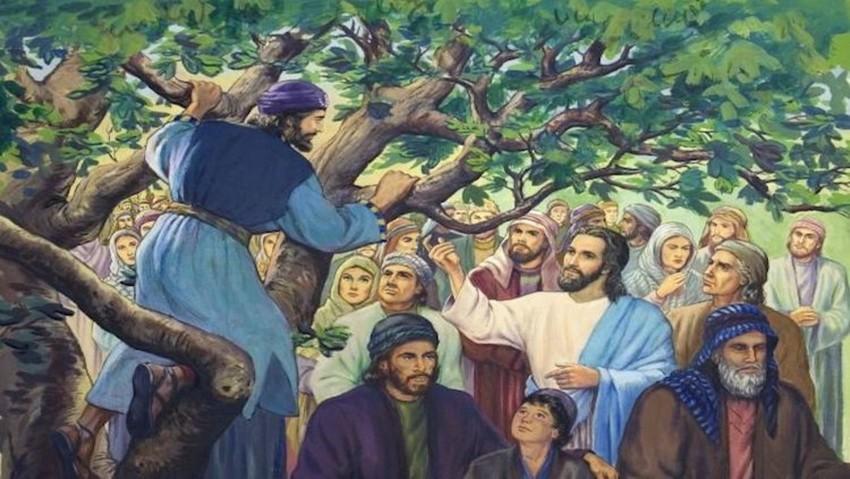 イエス様を一目見ようと木に登っ...