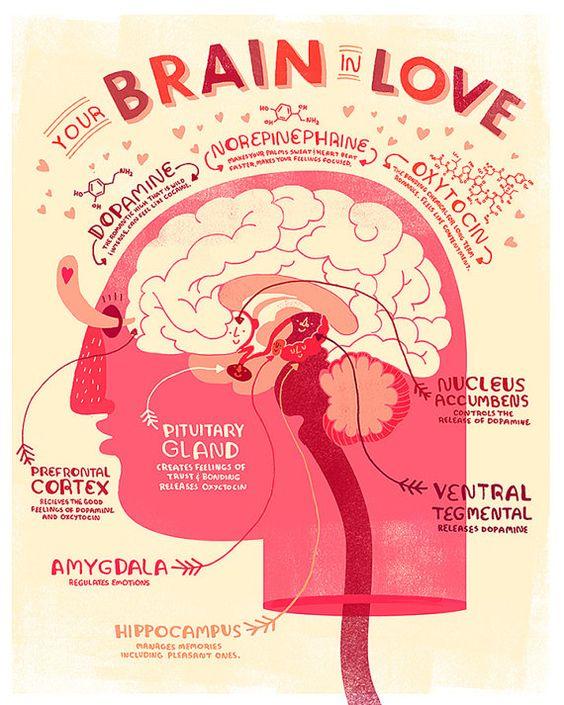訳しませんが、脳内ではいろいろ...
